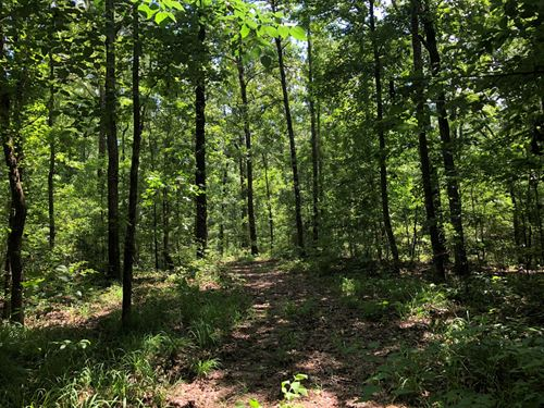Land 40 Acres Smith Rd, Sturgis, MS : Sturgis : Oktibbeha County : Mississippi