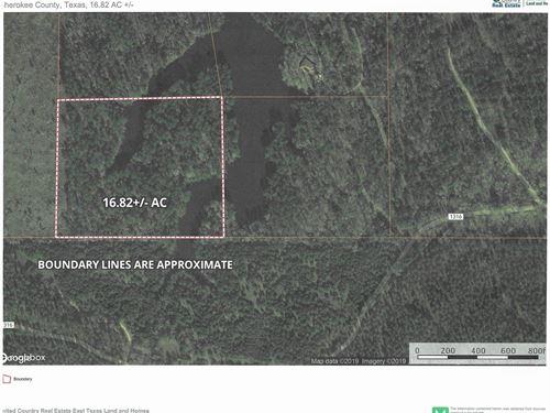 Recreational/Hunting/Fishing/East : Rusk : Cherokee County : Texas