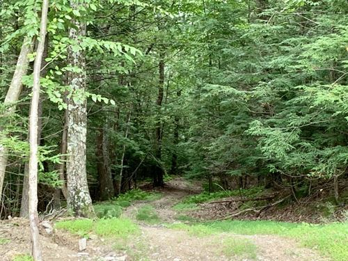 10 Acres For Hunting Or Recreation : Millville : Columbia County : Pennsylvania