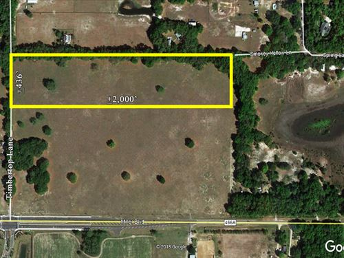 20 Acres In Lake County : Fruitland Park : Lake County : Florida