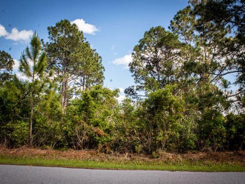 North Port Neighborhood With Power : North Port : Sarasota County : Florida