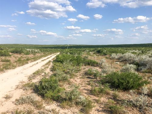 Riata Ranch Tract 21 : Freer : Duval County : Texas