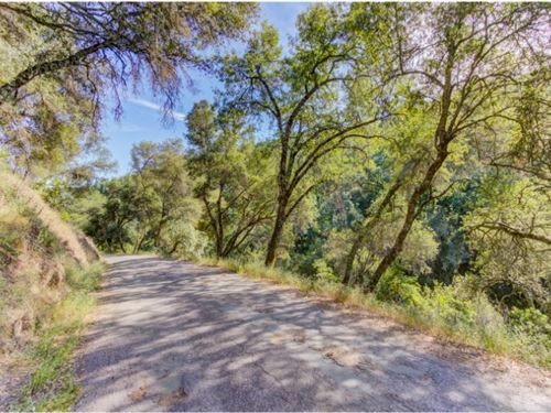 Stream, Trees, Paved Access : Jackson : Amador County : California