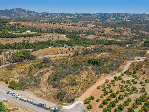 14.94 Acres Fallbrook : Fallbrook : San Diego County : California