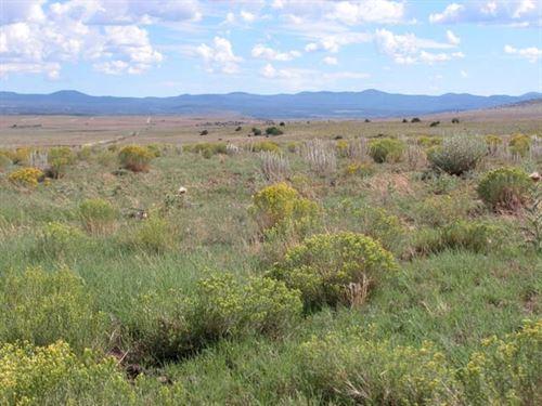 Exceptional 20 Acres In Central Az : Snowflake : Navajo County : Arizona
