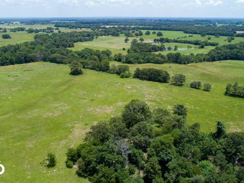 82 Acres Ponds, Road Frontage, Van : Grand Saline : Van Zandt County : Texas