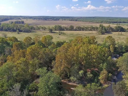 Sevier County Land Cossatot Ranch : Gillham : Sevier County : Arkansas