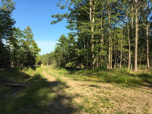 Recreational Timerland Exeter : Exeter Center : Penobscot County : Maine