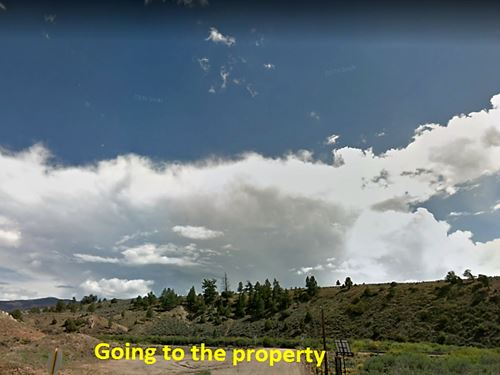 Wooded 7.9 Acreage In Colorado : Fort Garland : Costilla County : Colorado