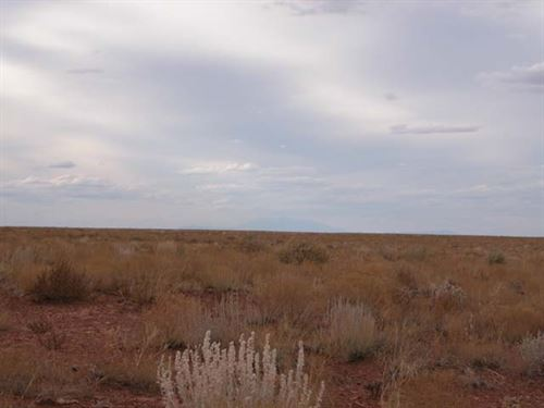 Beautiful Lot 4.77 Acres In Navajo : Snowflake : Navajo County : Arizona