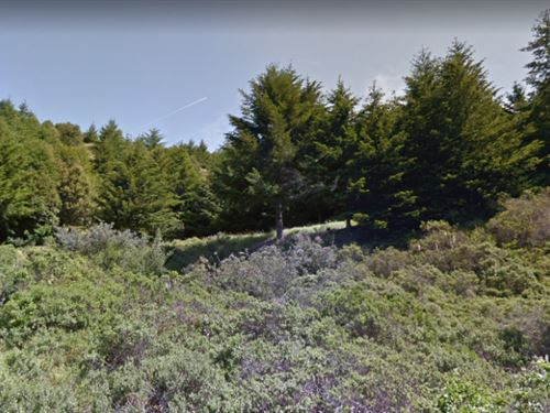 A Serene Property In Shelter Cove : Whitethorn : Humboldt County : California