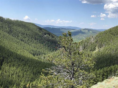 Mountain Seclusion : Neihart : Cascade County : Montana