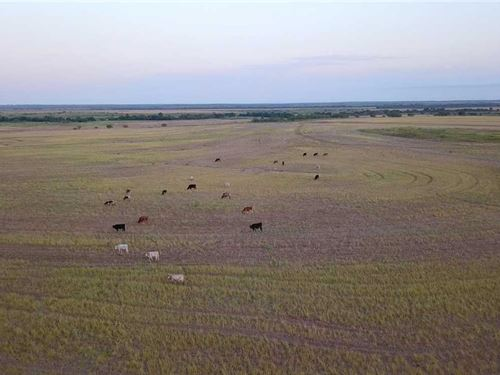80 Acres of Farmland With Rural WA : Megargel : Archer County : Texas