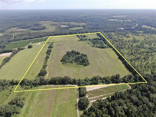 66.93 Acres : Greenville : Madison County : Florida