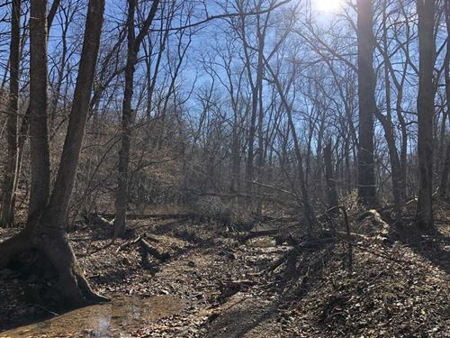 13 Remote Acres In Morgan Count : Barnett : Morgan County : Missouri