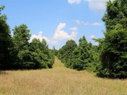 60 Acres In Yazoo County In Yazoo : Yazoo City : Yazoo County : Mississippi