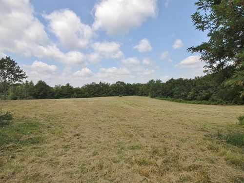Knob Noster Vacant Lots Zoned : Knob Noster : Johnson County : Missouri