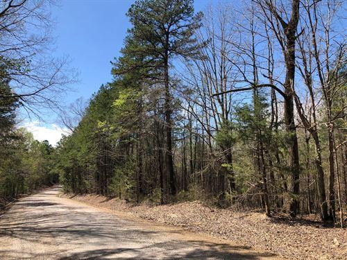 155 Acres CR 300, Calhoun City, MS : Calhoun City : Calhoun County : Mississippi