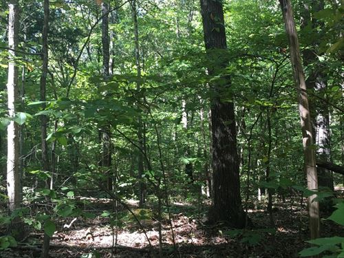 5 Acres For Sale In Tennessee : Lyles : Hickman County : Tennessee