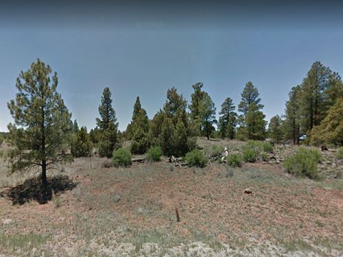 Next To National Park Land : Ramah : Cibola County : New Mexico