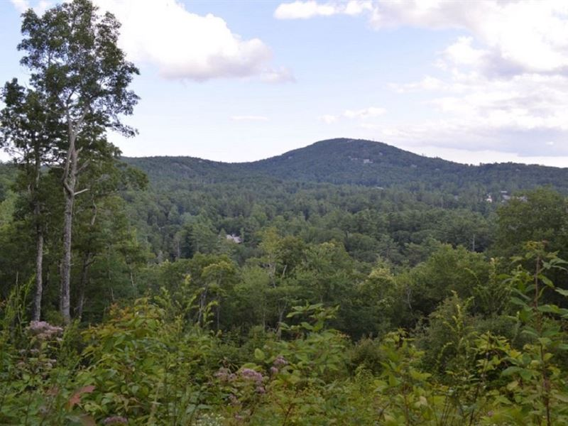 27 Mountain Parcels : Highlands : Macon County : North Carolina