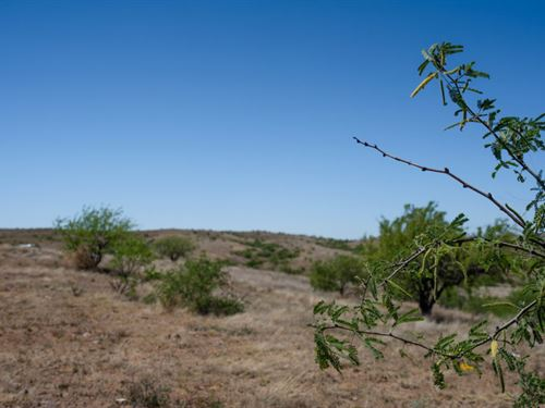 Peaceful Arivaca Property In Az : Arivaca : Pima County : Arizona