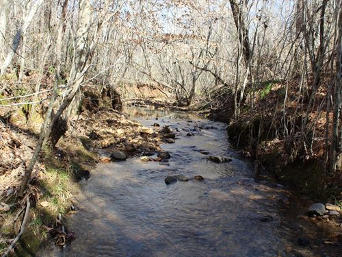 Needham Tract 220+/- Acres : Roanoke : Randolph County : Alabama
