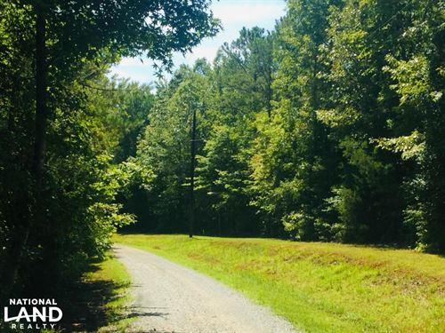 Lancaster Boxcar Road Timber Tract : Lancaster : South Carolina