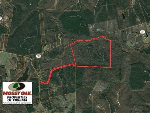 176 Acres of Hunting And Timber LA : Blackstone : Dinwiddie County : Virginia