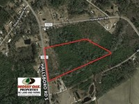 17.1 Acres of Residential And Hunt : Whiteville : Columbus County : North Carolina