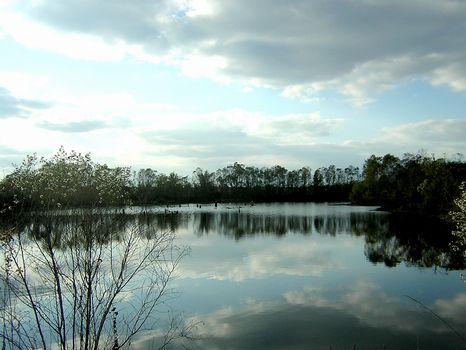 1500 Ft Paved Road Front w/7Ac Pond : Hawkinsville : Pulaski County : Georgia
