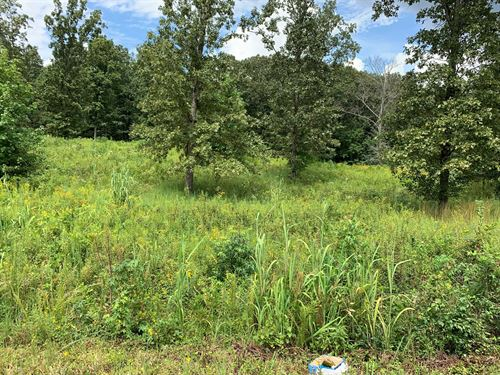 Land For Sale : Mount Pleasant : Lawrence County : Tennessee
