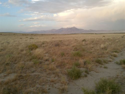 39.89 Acre Wide Open Space : Winnemucca : Humboldt County : Nevada