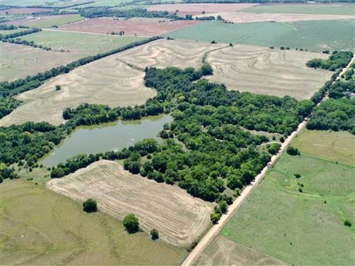 194 Acres of Excellent Hunting : Arlington : Reno County : Kansas