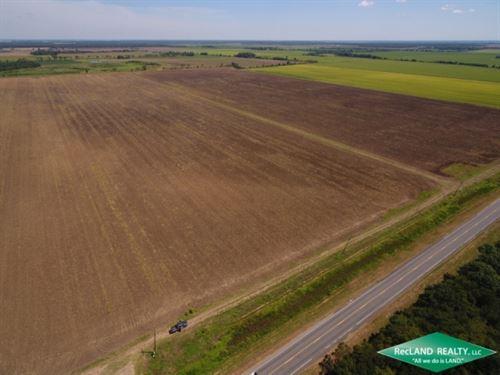 196 Ac, Irrigated Farm Near Mer Ro : Mer Rouge : Morehouse Parish : Louisiana