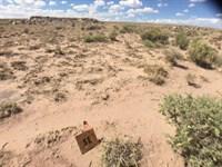 Enjoy Life With No Neighbors In Az : Holbrook : Navajo County : Arizona