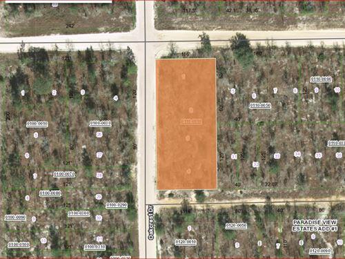 .67 Acres In Putnam County, Florida : Interlachen : Putnam County : Florida