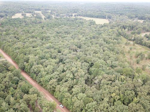 East Texas, Property, Timber : Hughes Springs : Cass County : Texas