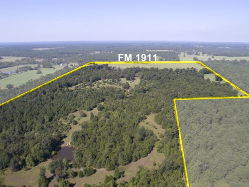 166 Acres Fm 1911 : Alto : Cherokee County : Texas