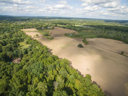 Estate Size Vacant Land For Sale : Dexter : Washtenaw County : Michigan