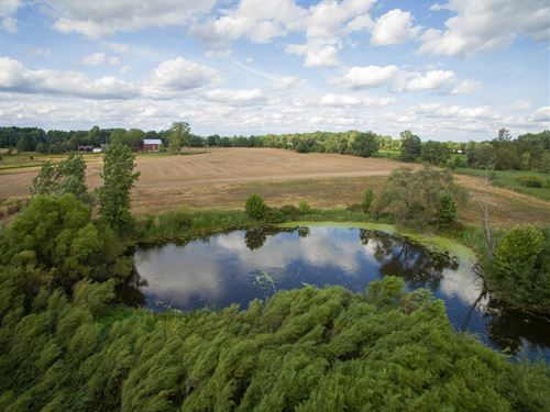 30 Ac Country Estate Build Site : Dexter : Washtenaw County : Michigan