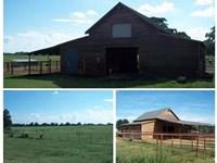 Beautiful Farm Tract In Houston Co : Perry : Houston County : Georgia