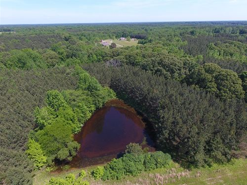 80 Ac, Woods, 2 Ponds, Barn, Open : Sardis : Panola County : Mississippi