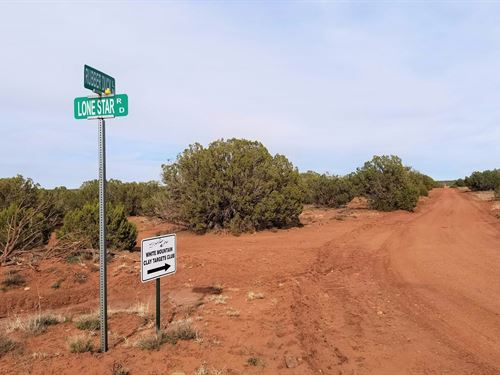 Beautiful Treed Lot, $229 P/Mo : White Mountain Lake : Navajo County : Arizona