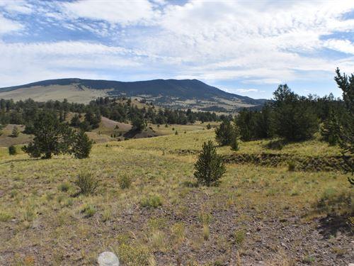 Colorado Ranch Land Bordering : Guffey : Park County : Colorado