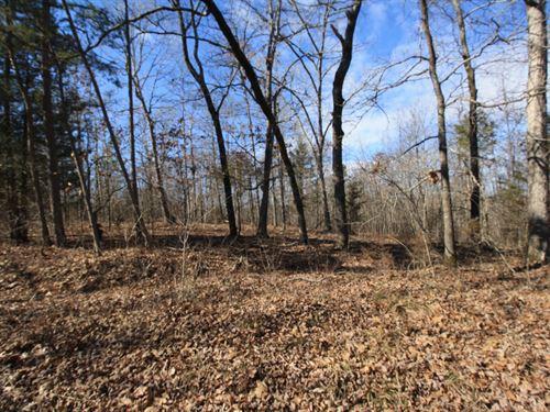 Vacant Land For Sale 16 Acres : Piedmont : Wayne County : Missouri