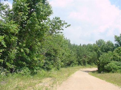 Tennessee Timber Land Wayne County : Waynesboro : Wayne County : Tennessee