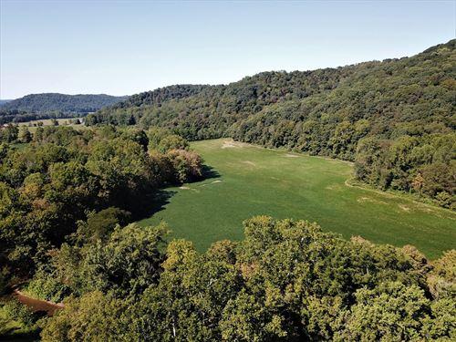 143 Acre Hunting Row Crop Farm : Blue Creek : Adams County : Ohio