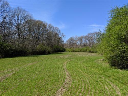 Ohatchee Creek Farm-South Side : Ohatchee : Calhoun County : Alabama