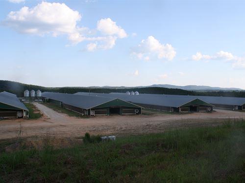 4 Mega House Poultry Farm, 35 Ac : Heflin : Cleburne County : Alabama